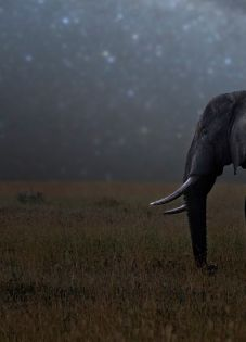 5 Ways Marketing Websites Can Be More Memorable