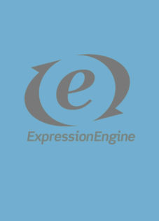 Pros and Cons of Using ExpressionEngine's Default Stylesheet Parser